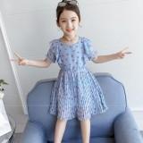 Dress  8380