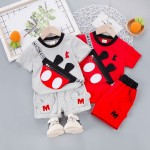 Boy 2pcs Set 8728