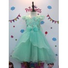 Party Gown 6 (809)